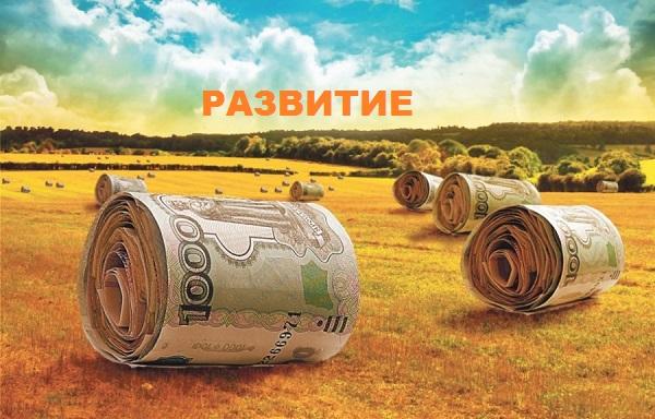 Бизнес в сельском хозяйстве — идеи, планирование, развитие