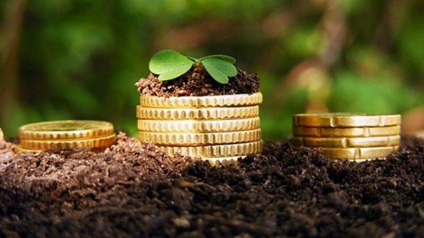 Идеи бизнеса сельхоз открытие охранной фирмы