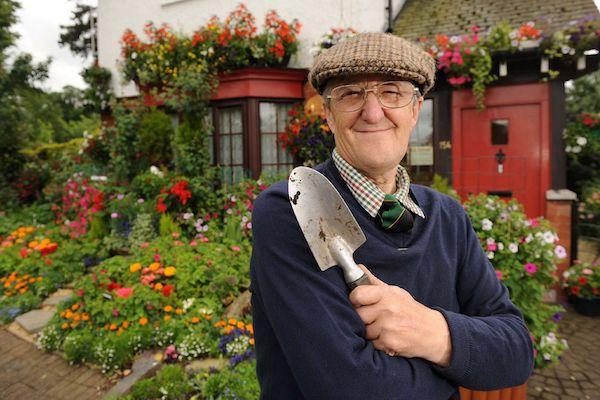 бизнес для пенсионеров в деревне