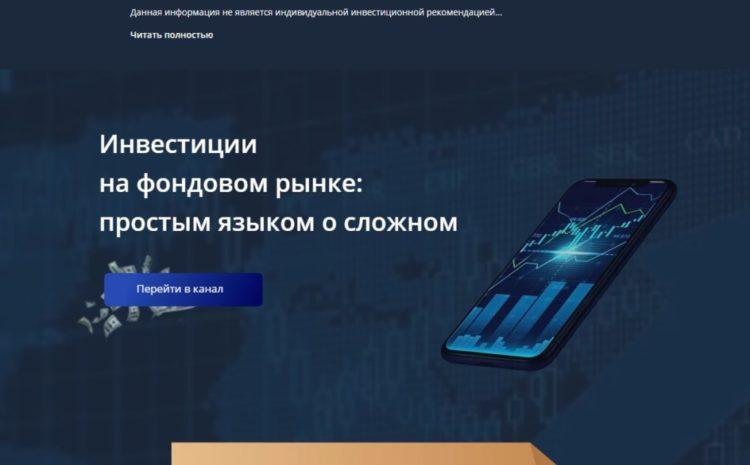 Структурный анализ инвестиций BidKogan, bidkogan.com