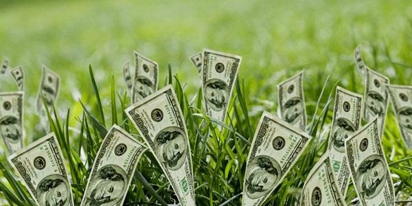Как и какие акции можно купить сегодня – капитал, аналитика, примеры
